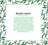 Template cards for the plant background of green Royalty Free Stock Image