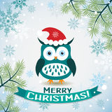 Template Christmas greeting card with a owl Royalty Free Stock Photography
