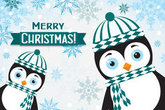 Template Christmas greeting card with a penguin, vector Stock Images