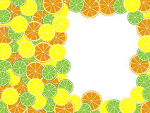 Template citruses. Template for text with a citrus background Royalty Free Stock Photos