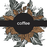 Template. Coffee branch with leaves and coffee beans. Retro style. Vector. Template. Coffee branch with leaves and natural coffee beans. Retro vintage style stock illustration