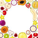 A Template of Colourful Tropical Fruits vector illustration