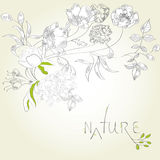 Template for decorative card or background. Background with decorative flowers and leaves Royalty Free Stock Image