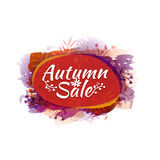 Template design colored autumn sticker, logo, label, coupon. Autumn discounts, sale, promotions, offers. Vector. Royalty Free Stock Photo