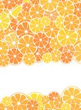 Template Design cover. sliced halves of citrus fruits. Template Design cover. Vector illustration of sliced halves of citrus fruits oranges and tangerines. For Stock Photography