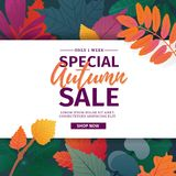 Template design discount banner for autumn season. Poster for special fall sale with flower and herb, autumnal leaf Royalty Free Stock Photography