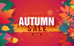 Template design discount web banner for autumn season. For special fall sale with flower and herb, autumnal leaf Royalty Free Stock Images