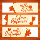 Template Design horizontal banners Hello autumn. Modern posters, stickers I love autumn with decor of autumn maple Royalty Free Stock Photography