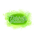 Template design logo, badge, label, banner with plants elements, wreaths and laurels green branches. Organic, bio Stock Images
