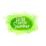 Template design of logo, stamp silhouette Hello, Summer. Watercolor green texture with floral, plant, berry decoration Royalty Free Stock Images