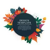 Template design round banner for fall season with white frame and herb. Promotion offer with autumnal oak plant, maple Stock Image
