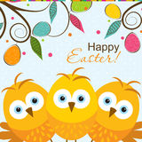 Template Easter greeting card, chick, vector Stock Images