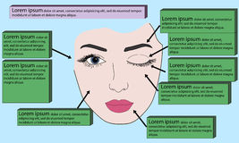 Template face for makeup. Vector illustration Royalty Free Stock Photography