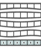 Template film roll. Vector realistic illustration of film strip on white background. Template film roll Stock Photography
