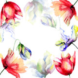 Template for floral card with flowers Stock Photography