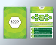 Template flyer with polygonal background Royalty Free Stock Photography