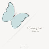 Template for folder, business card and invitation. Template for folder, brochure, business card and birthday invitation with butterfly royalty free illustration