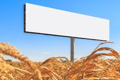 Template in the form of an empty billboard on a yellow corn field stock image
