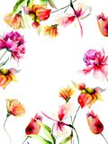 Template for greeting card with colorful flowers Stock Photos