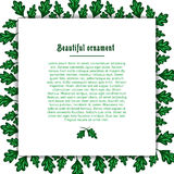 Template greeting card with a frame of green oak Royalty Free Stock Photo