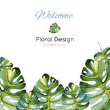 Template greeting card with green leaves Stock Photos