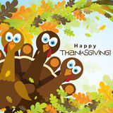 Template greeting card with a happy Thanksgiving turkey, vector Royalty Free Stock Photography