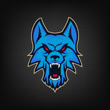 Template of logo with angry wolf head. Emblem for sport team. Ma Royalty Free Stock Photography