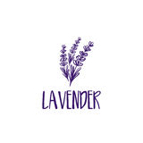 Template logo design of abstract icon lavender. Stock Photo