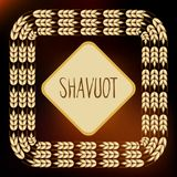 Decorative grain ears to create design compositions. The Jewish holiday of Shavuot. Symbols of the harvest and. Template in a minimalist style to create labels Stock Photos