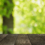 Template from oak surface and natural blured background Stock Photo