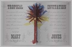 Template with palm trees Royalty Free Stock Photos