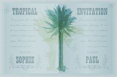 Template with palm trees Royalty Free Stock Photo