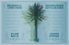 Template with palm trees Stock Photos