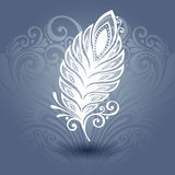 Template with Peerless Feather in Ornate Background Stock Images