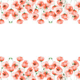 Template postcard with poppies on a white background Stock Image