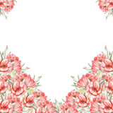 Template postcard with red flowers Royalty Free Stock Images