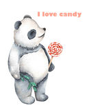 Template of postcard with watercolor illustration panda and lollipop Royalty Free Stock Image