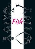 Template with set of sea fish on black background. Vector sketch. Template with set of sea fish on black background. Perch, cod, mackerel, flounder, saira Royalty Free Stock Photo
