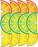 Template of sliced  lemon and orange -1 Royalty Free Stock Image