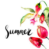 Template for summer card with Red Tulips flowers Stock Image
