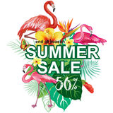 Template for summer sale Advertisement Royalty Free Stock Photography