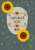 Template for sunflower seeds packaging and labels Stock Photography