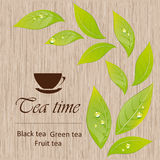 Template of a tea menu Royalty Free Stock Photo