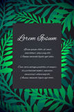 Template thank-you letter, invitation, greeting card. With bright green foliage on a dark background and place for text Stock Photos