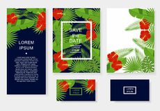 Template with tropical flowers and leaves. Pattern flyer, invitation, flyer, business card. Stock Photos