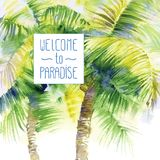 Template with vector watercolor palms Royalty Free Stock Photo