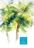 Template with vector watercolor palms stock illustration