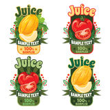 Templates for labels of juice from melon and tomato Stock Photography