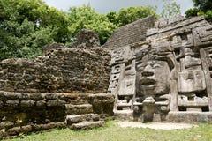 Temple à Belize Photographie stock libre de droits