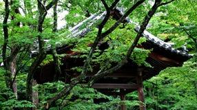 Temple à Kyoto, Japon Image stock